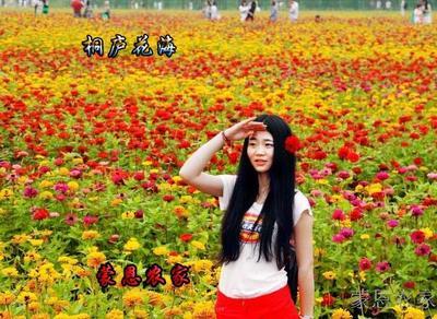 杭州农家乐 桐庐花海