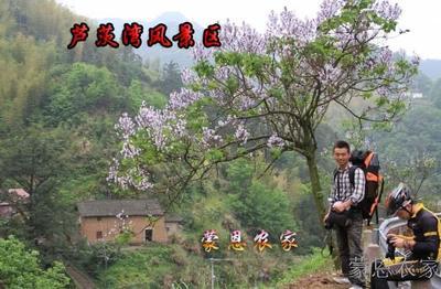桐庐农家乐 春暖花开的芦茨湾古村落